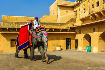 Enjoy Your Travel Luxurious In Jaipur With Your Friends And Family